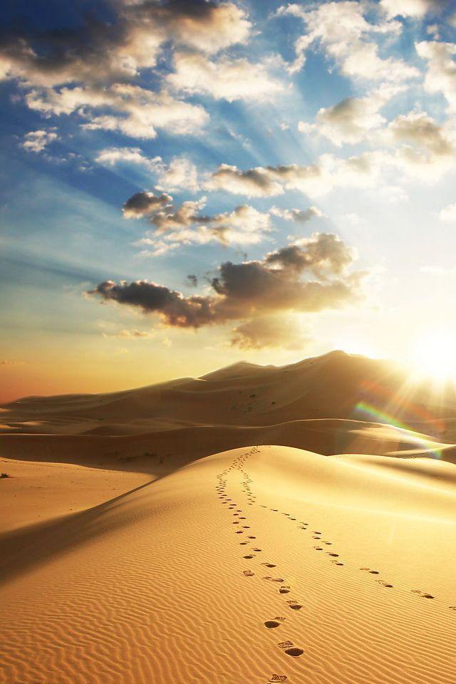 壁纸 沙漠 桌面 640_960 竖版 竖屏 手机