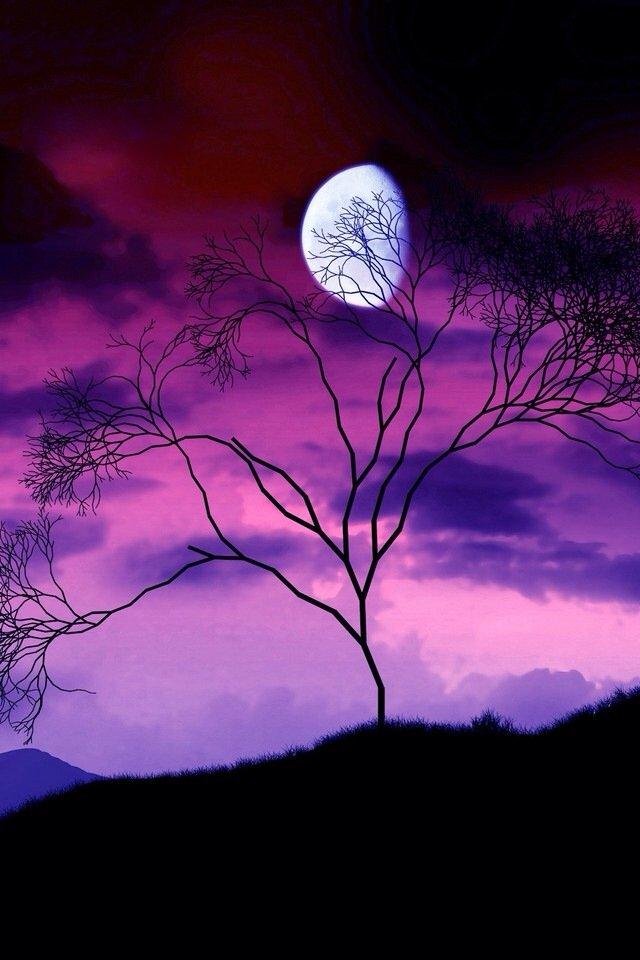 iphone4风景紫色壁纸_iphone4风景紫色壁纸下载